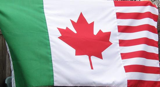 North American flag